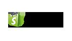 Shopify-Newsletter-Schnittstelle